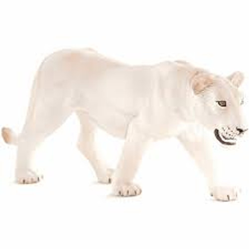 Mojo - White Lioness