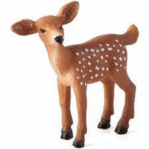 Mojo - White Tailed Deer Fawn