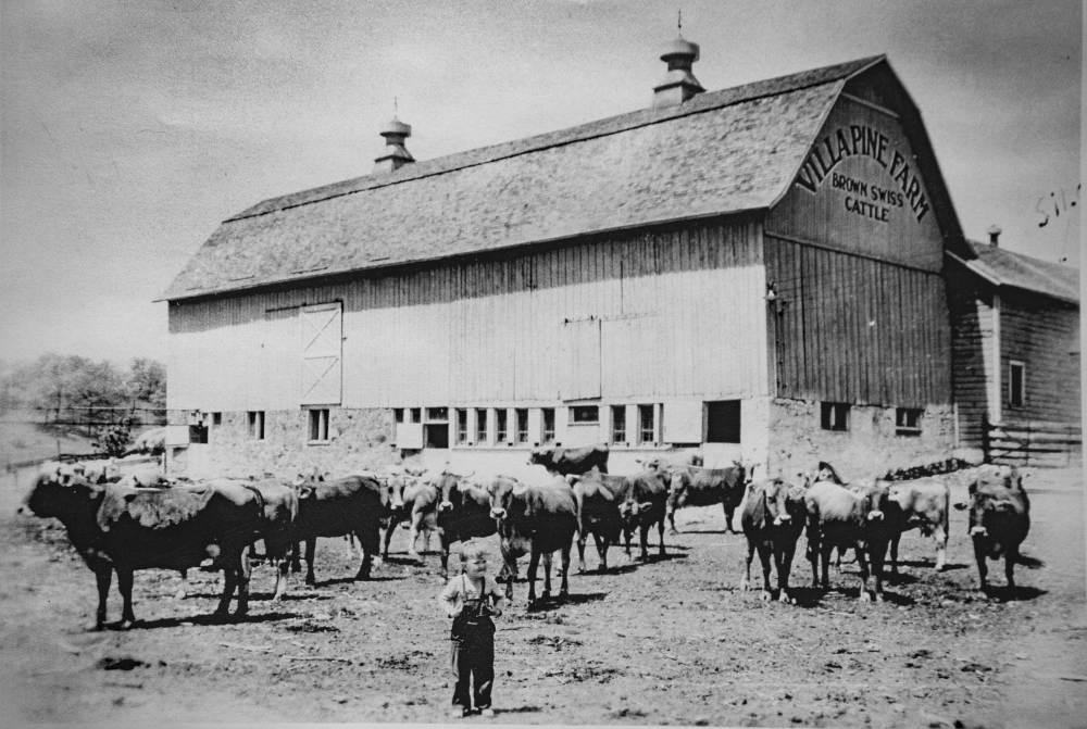 best barn overalls