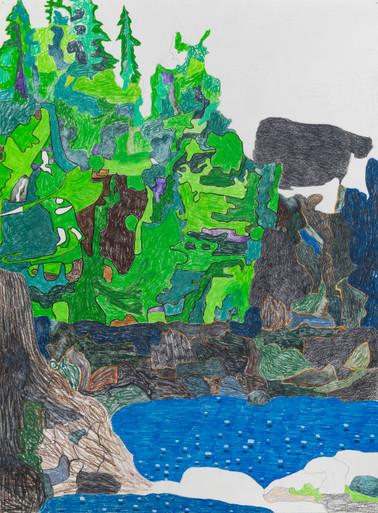 david dupuis puget sound memory rainforest and tidal pools