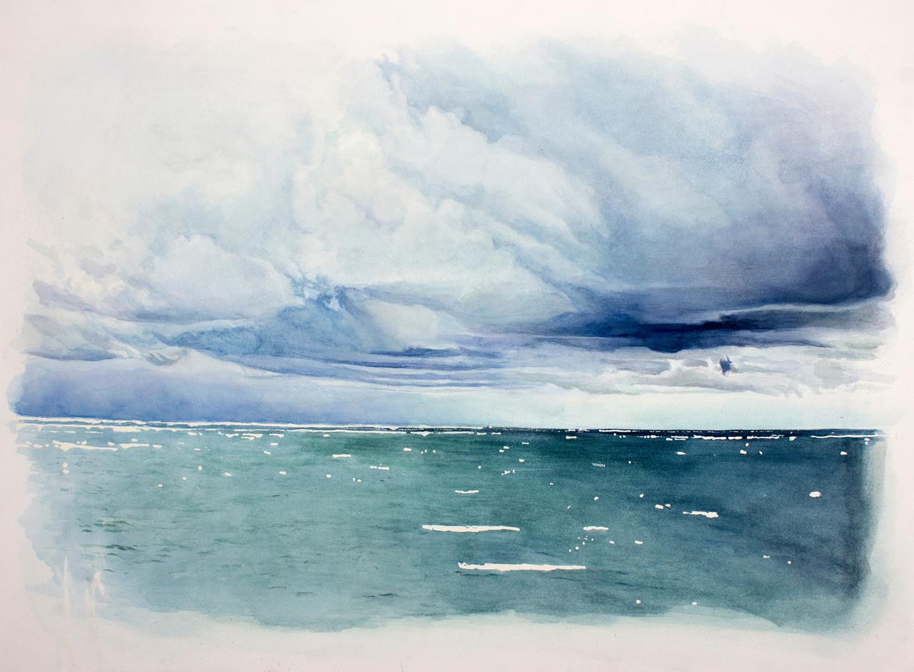 william powhida antarctic speculative fiction
