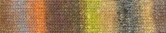 Noro #467 Orange, Brown, Yellow Silk Garden Sock Yarn (2 - Fine)