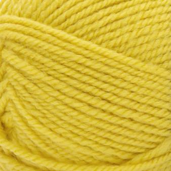 Patons Celery Inspired Yarn (5 - Bulky)