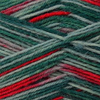 Regia #01164 Gluhwein Regia 4-ply Color Yarn (1 - Super Fine)