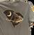SC State and Hunley T-Shirt (Indigo Blue)