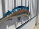 "89"" Blue Marlin Half Mount Fish Replica"