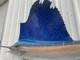 "110"" Pacific Sailfish Full Mount"