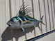 """43"""" Roosterfish Full Mount"""