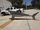 "158"" Great White Shark 3D Suspension Mount"
