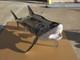 "76"" Great White Shark 3D Suspension Mount"