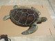 """Green Turtle Mount - 48"""" Two Sided Wall Mount Replica"""