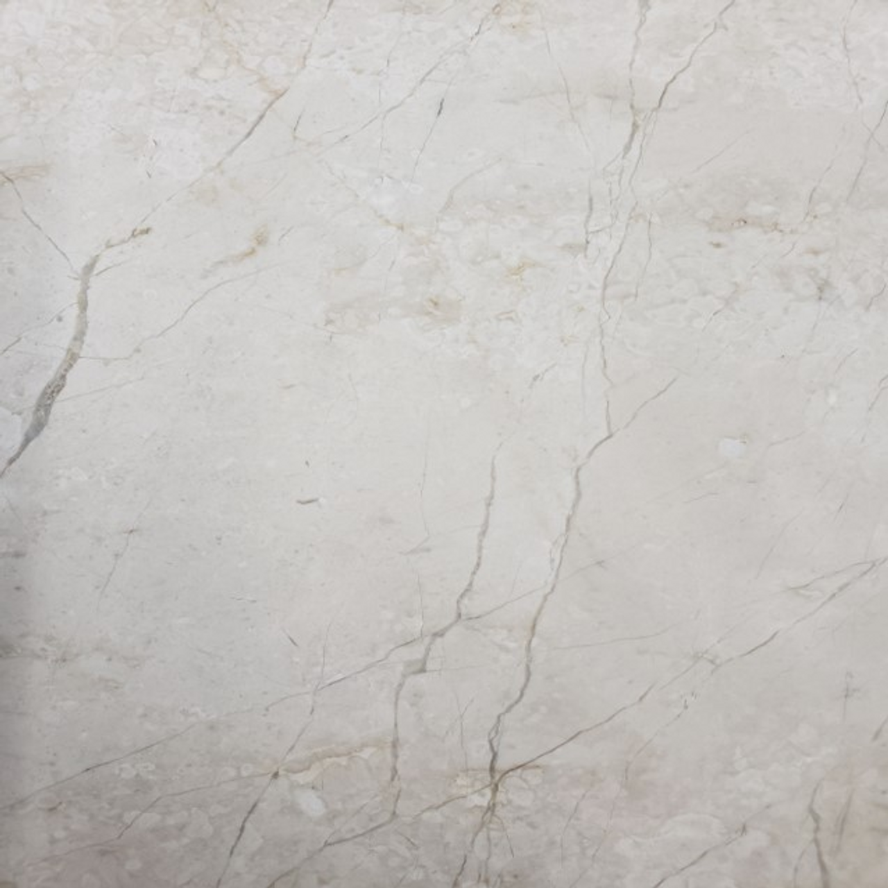 Phaedra Cream | Marble Honed | 12x12 | Natural Stone | FOB TN