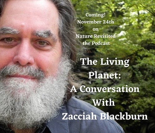 Nature Revisited Podcast - The Living Planet: A Conversation with Zacciah Blackburn - Nov 24th, 2020