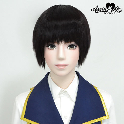 Assist: Pure Short Wig - Brown 14 (Basic) (011494)