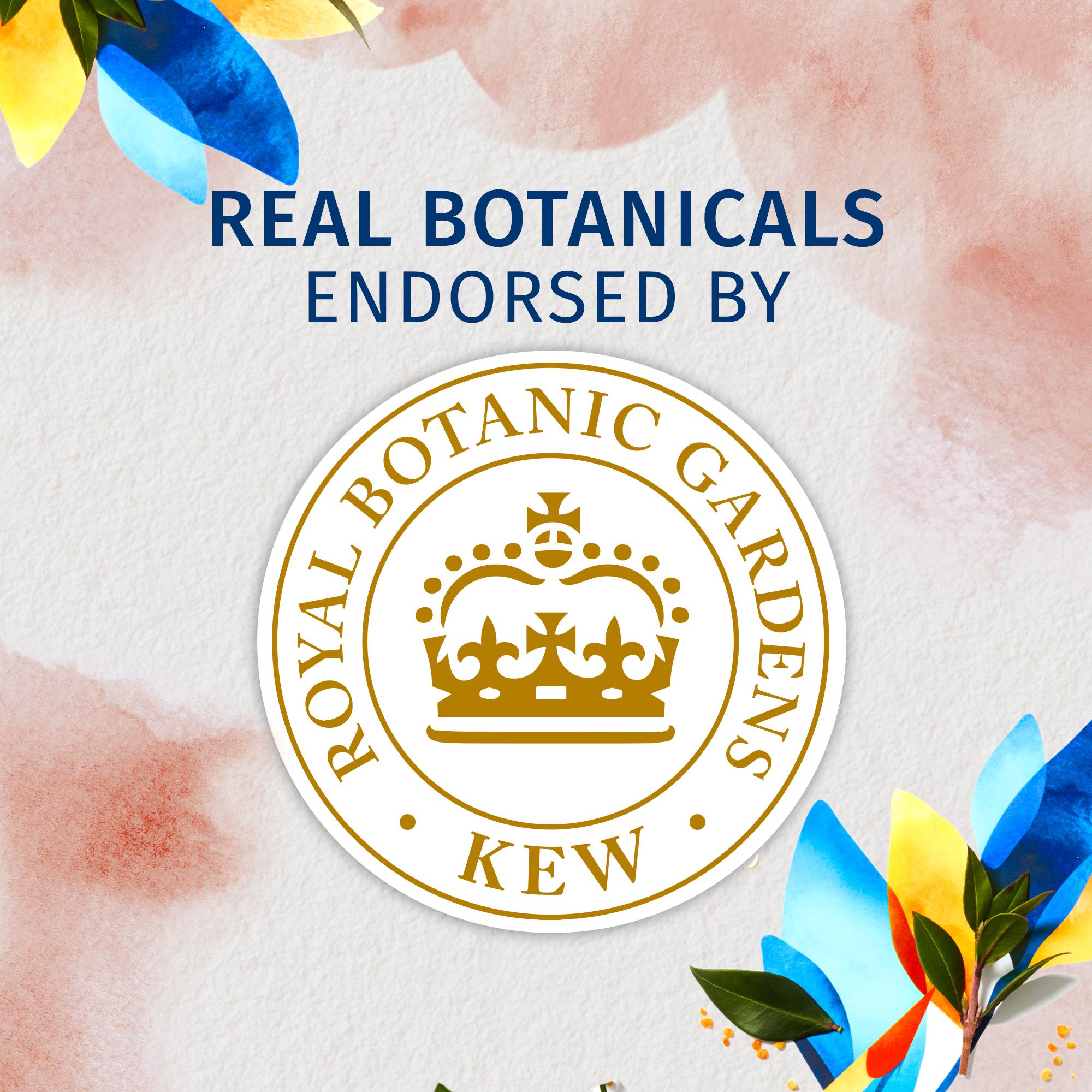 Bio:Renew Vitamin E With Cocoa Butter Conditioner, 400Ml | No Parabens No Colourants
