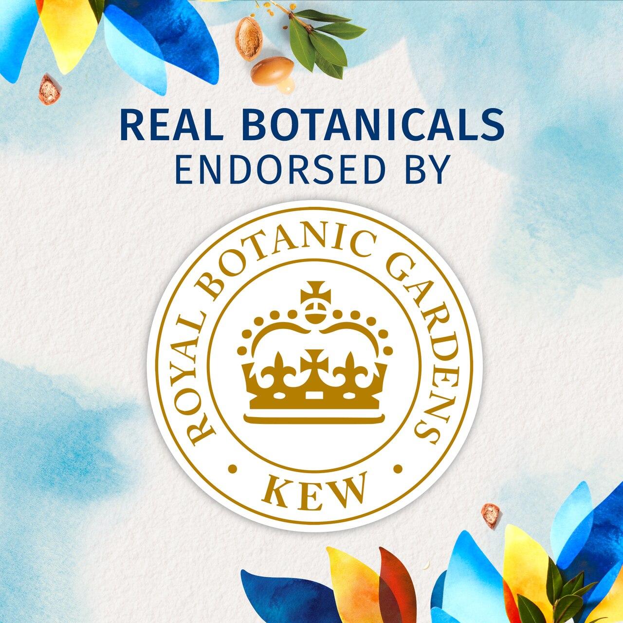 Herbal Essences Bio:Renew Argan Oil Of Morocco Shampoo_400Ml |No Parabens No Colourants