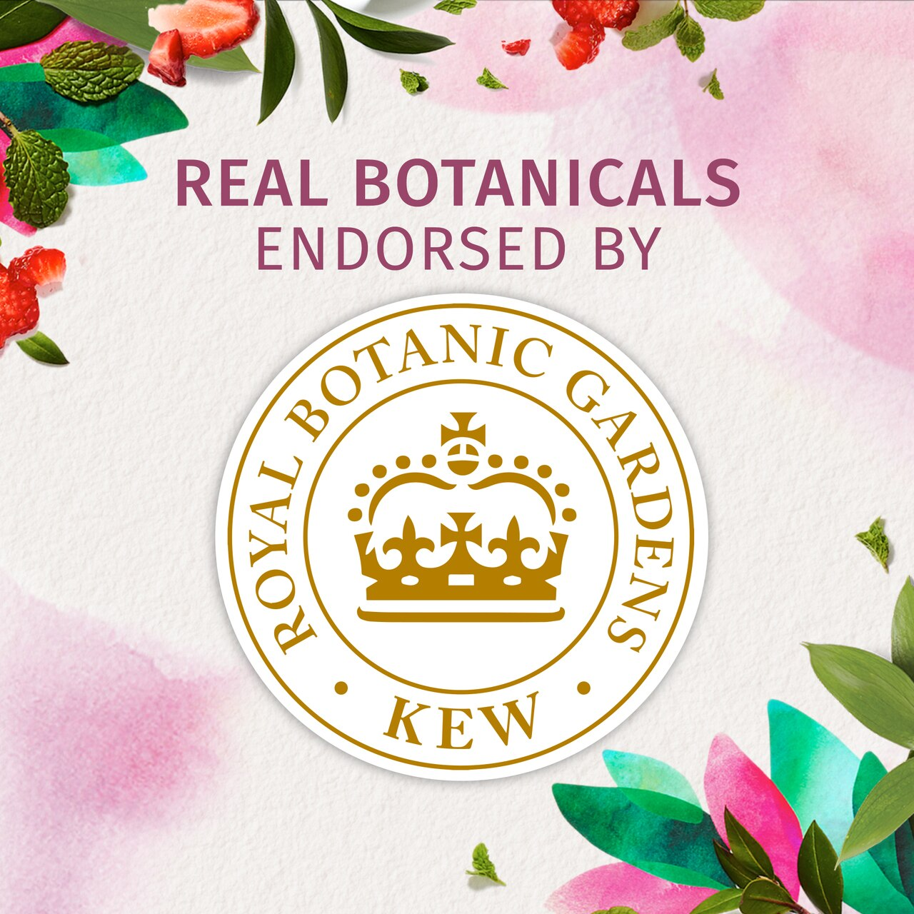 Herbal Essences Bio:Renew White Strawberry & Sweet Mint Shampoo_400Ml, No Parabens No Colourants