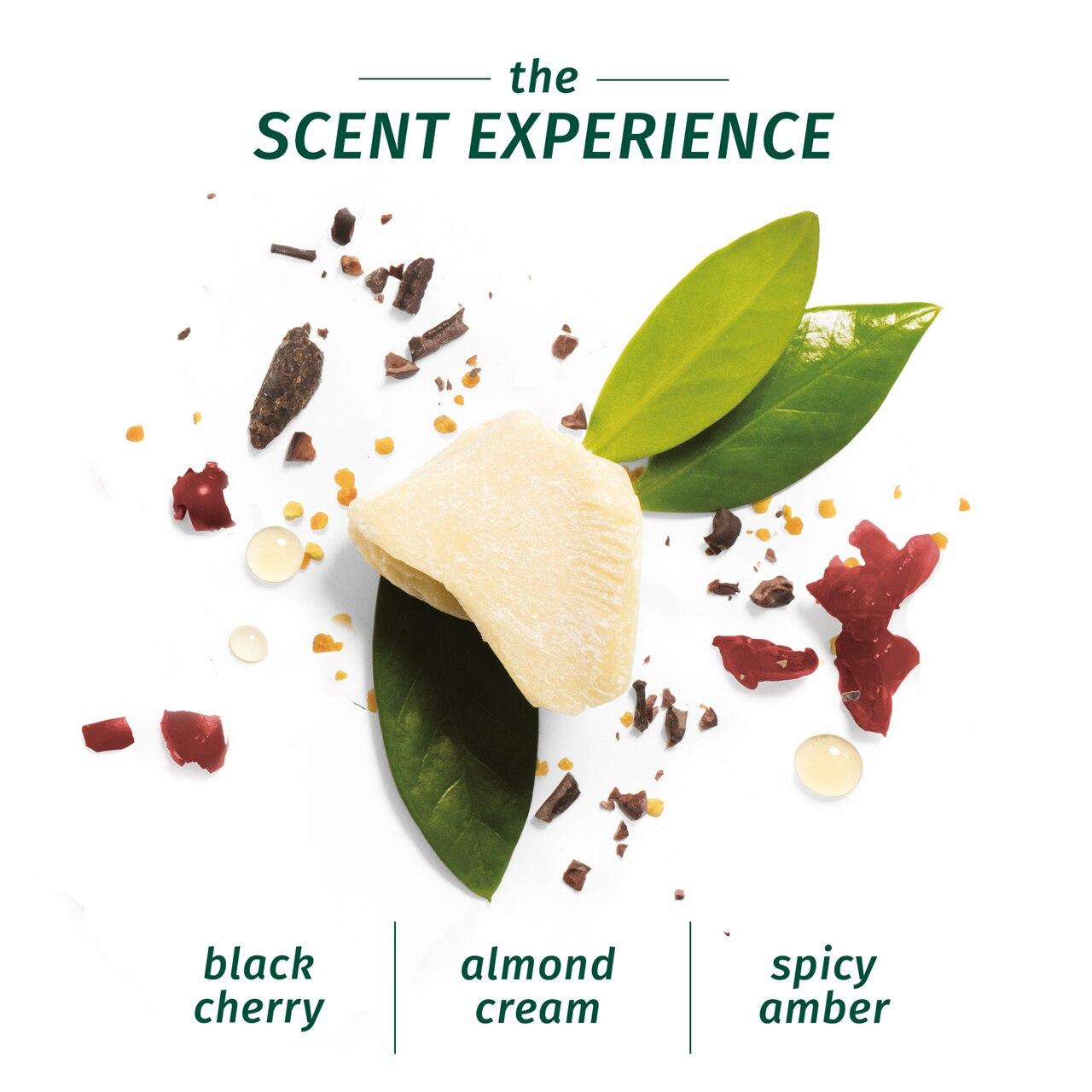 Herbal Essences Bio:Renew Vitamin E With Cocoa Butter Shampoo_400Ml | No Parabens No Colourants