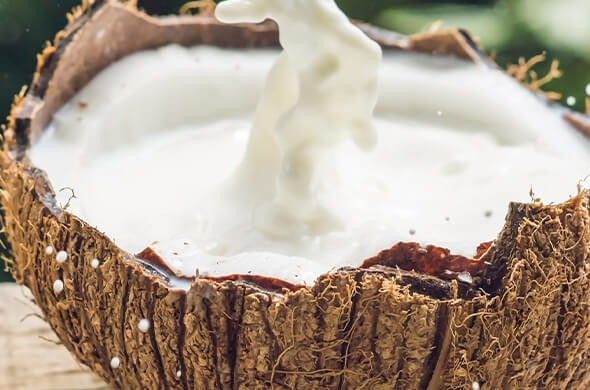 Coconut Milk for Your Hair: Benefits, Uses and Tips