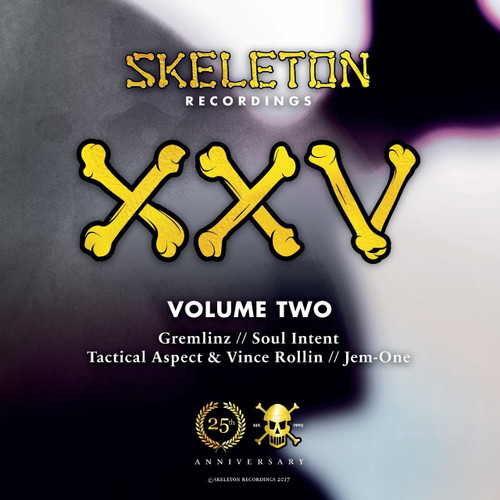 "Various Artists - Skeleton XXV Project Volume Two - 12"" Vinyl"
