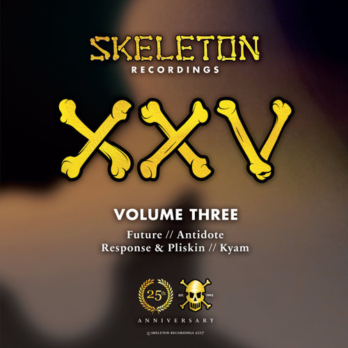 "Various Artists - Skeleton XXV Project Volume Three - 12"" Vinyl"
