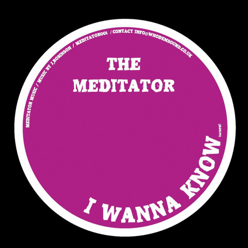 "The Mediator - I Wanna Know // Hold A Medz Mix - 12"" Vinyl"