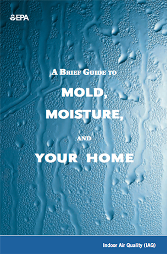 A Guide to Mold, Moisture and Your Home