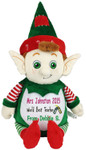 Personalised Message Bear - Green Elf Cubby