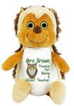 Personalised Message Bear - Hedgehog Hug-Me Cubby