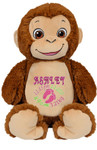 Personalised Hug-Me Cubby - Signature Monkey (Birth Design)