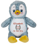 Personalised Hug-Me Cubby - Signature Penguin with a personalised teddy bear message