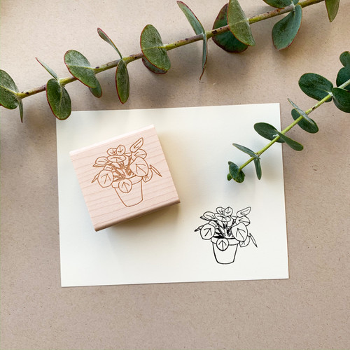 Pilea Peperomioides stamp by Paper Sushi