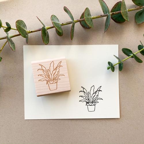 Bird's nest fern stamp by Paper Sushi