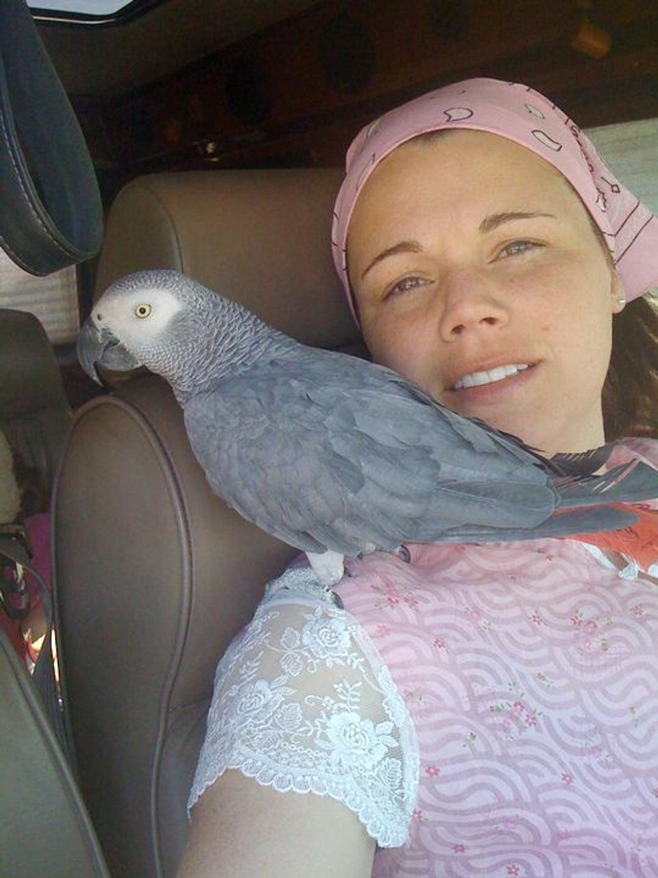 Rocky, an African Grey, finds his happy home