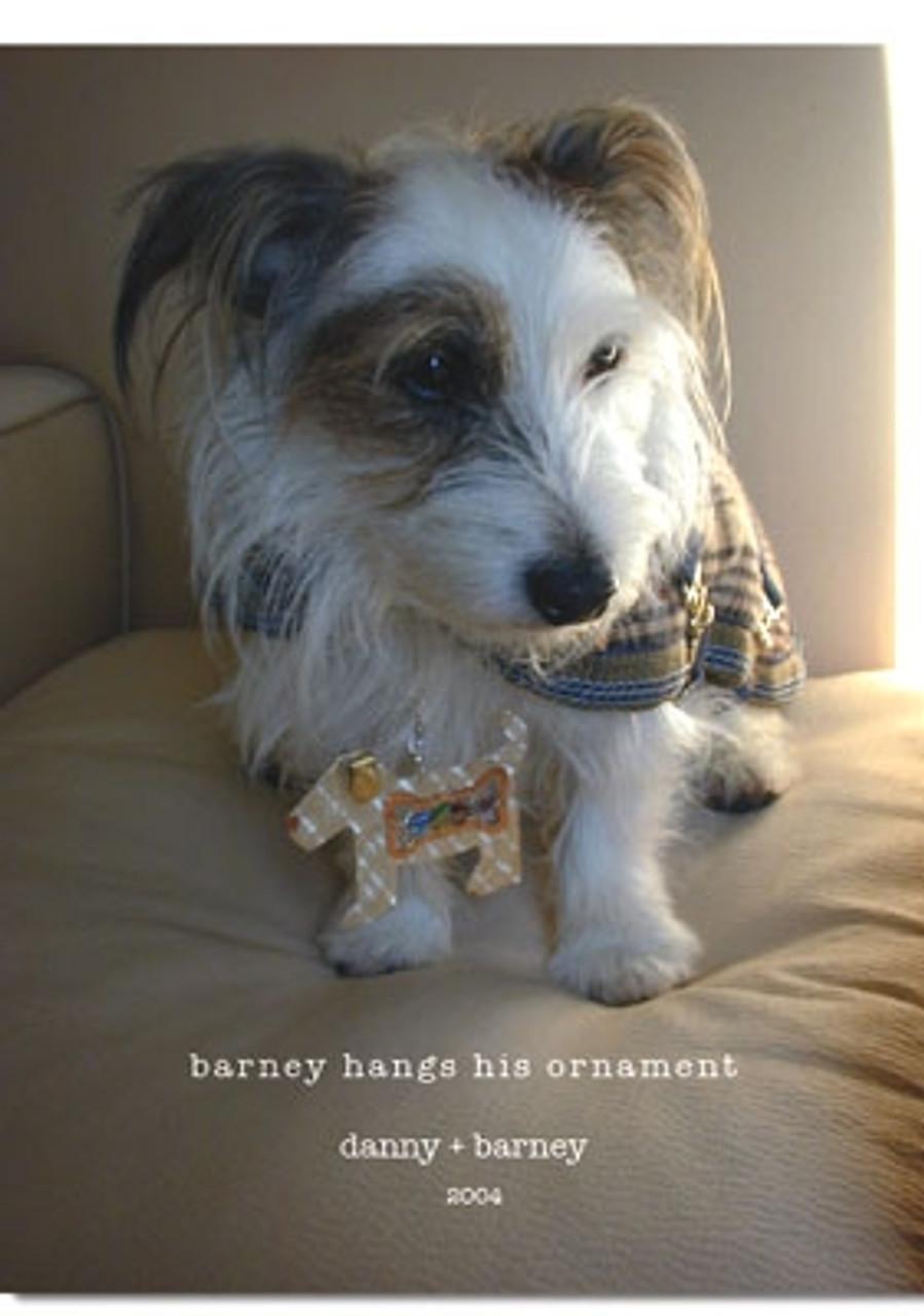 Danny's Barney