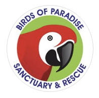 Photo Contest 2016 Charity goes to Birds of Paradise