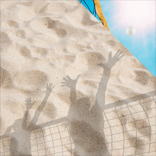 Reminisce The Volleyball Collection 12x12 Paper: Beach Volleyball