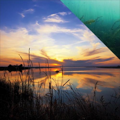 Reminisce Gone Fishing 12x12 Paper: Fisherman's Dream