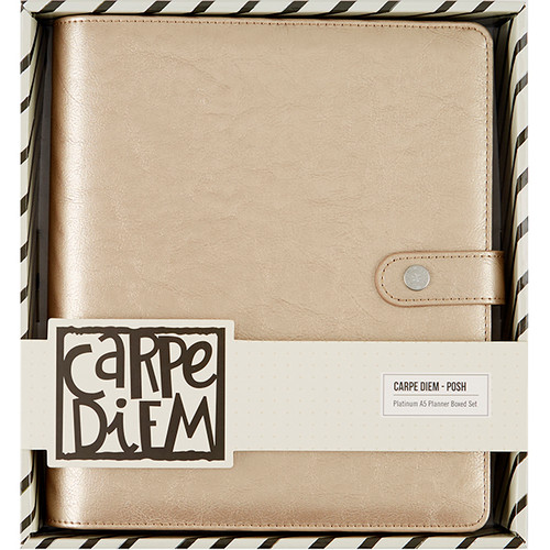 CLEARANCE | Simple Stories Carpe Diem A5 Planner Boxed Set: Platinum Posh