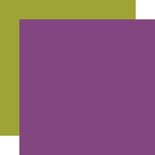 Echo Park I Love Halloween 12x12 Paper: Purple / Green (Coordinating Solid)