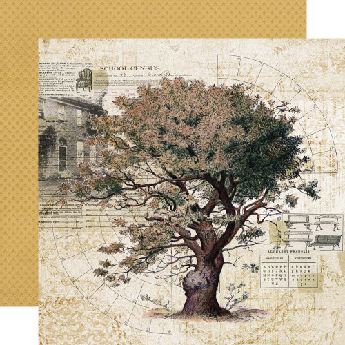 Simple Vintage Ancestry 12x12 Paper: Family Tree