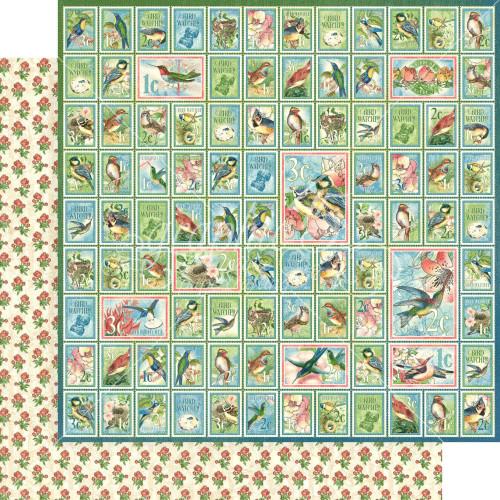 Graphic 45 Bird Watcher 12x12 Paper: Best of Friends