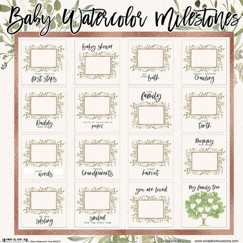 Scrapbook Customs 12x12 Family Themed Collection Pack: Baby Watercolor   Milestones