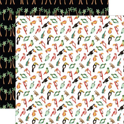 Echo Park Animal Kingdom 12x12 Paper: Birds Of A Feather