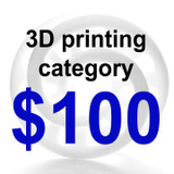 3D Printing Category $100