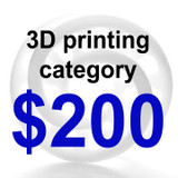 3D Printing Category $200