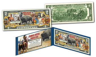 Famous Native Americans Buffalo Bison Colorized $2 Bill