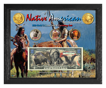 """Native American Symbols Set 2C Colorized $50 Buffalo Tribute Coin & $2 Bill Currency Set in 8"""" x 10"""" Frame"""