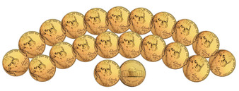 Set of 20 24K Gold-Plated Nickels