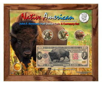 "Native American Bison Colorized Coin & Currency Set in 8"" x 10"" Frame - Landscape"